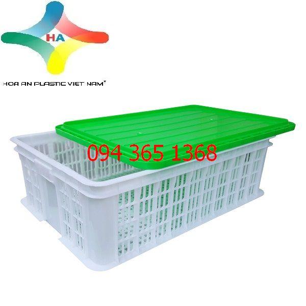 Thùng nhựa rỗng (sóng nhựa hở) HS009